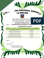 Biologia General- Carbohidratos y Lipidos- Grupo c 4 (1)