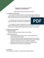 Modelo de TDR  para informatica