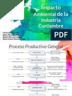 Impacto Industria Curtiembre.pptx