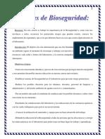 Normas de Bioseguridad (Casi Termiando)