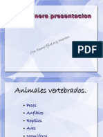 Presentacion PDF.