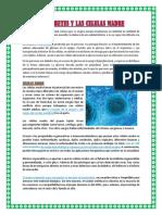 LA DIABETES Y LAS CELULAS MADRE.docx