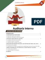 Plantilla Auditoria.docx