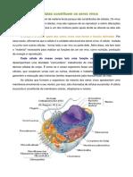 Polígrafo as Células e o Corpo Humano