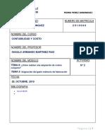 Contabilidad_Actividad _1 (Pedro Perez D) OK
