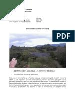 contabilidad ambiental trabajo final.pdf