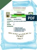 Citoplamatica Informe n8 Biología