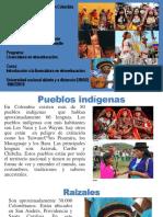 DiversidadEtnicaYCuluralEnColombia terminado..pptx