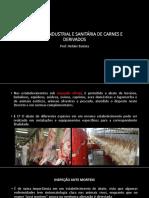 Inspeção Industrial e Sanitária de Carnes e Derivados Aula 4