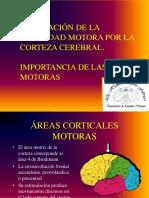 39 Regulación de La Actividad Motora en La Corteza
