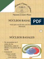 37 Núcleos Basales