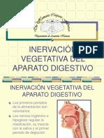 30 Inervación Vegetativa Del Aparato Digestivo