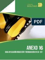 Anexo 16. Inducción y Reinducción en SST