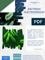 Bacterias electrogenicas