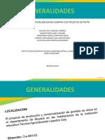 Diapositivas Proyecto Pro