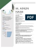 CV Naim_E.docx