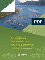 Antecedentes-económicos-de-la-industria-salmonera-en-Chile