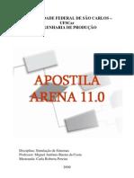 Apostila Arena 11