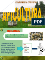 APICULTURA I - 2016.pdf