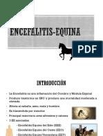 ENCEFALITIS-EQUINA