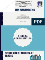 Sistema Hemolinfatico