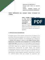 Apelacion Sentencia -Alejandro Joel - Violacion