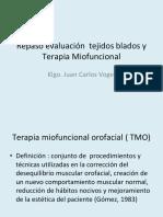 Terapia Miofuncional-fono 2019