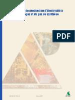 Biogaz et production d'electricité.pdf