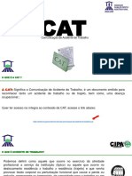 Apresentação Cipa Sipat Cat 2019 Antônio Augusto Braga Guimarães