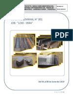 REPORTE SEMANAL DEL 06 AL 08 de Junio 2019.docx