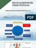 Presentacion Paraguay Congreso