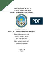 MARKETING AMBIENTAL CASI TERMINADO.docx