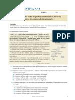 Ficha Formativa Nº 4