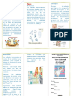 Triptico Metodos Anticonceptivos (Medidas)