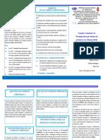 triptico Consejo comunal.pdf