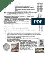 Historia Apuntes Arquitectura Romana