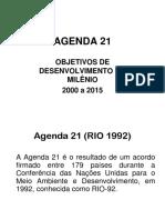 Aula 4 Ods e Agenda 21