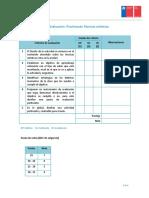 formato pauta evaluacion