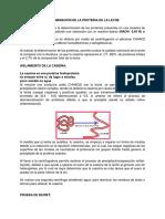 Lab 4_determinación de La Proteína de La Leche