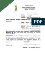 VARIO DOMICILIO JORGE CASTRO.doc