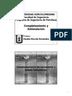 2. Completamiento de Ycto o Lower Completion (1).pdf