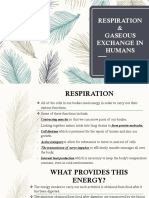 Respiration & Gaseous Exchange in Humans