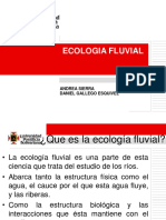 Ecologia Fluvial