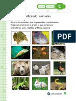 animales vertebrados.doc