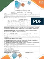 Formato - Perfil de Cargos-LAPTOP-OISRHG9G
