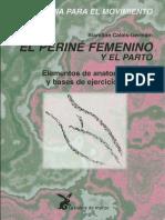 Perine Femenino