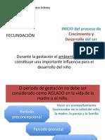 3220611_cd1prenatalestudiosos.pdf