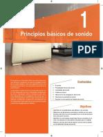 01 MEGAFONIA_WEB.pdf