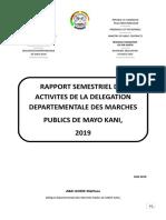 Rapport Semestriel Mayo Kani 2019