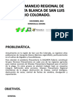 PLAN DE MANEJO REGIONAL DE MOSQUITA BLANCA DE.pptx